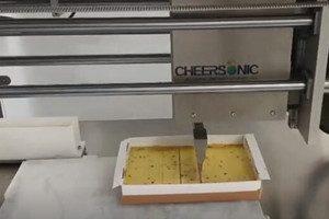 UFM4000 食品超声波切割机 2